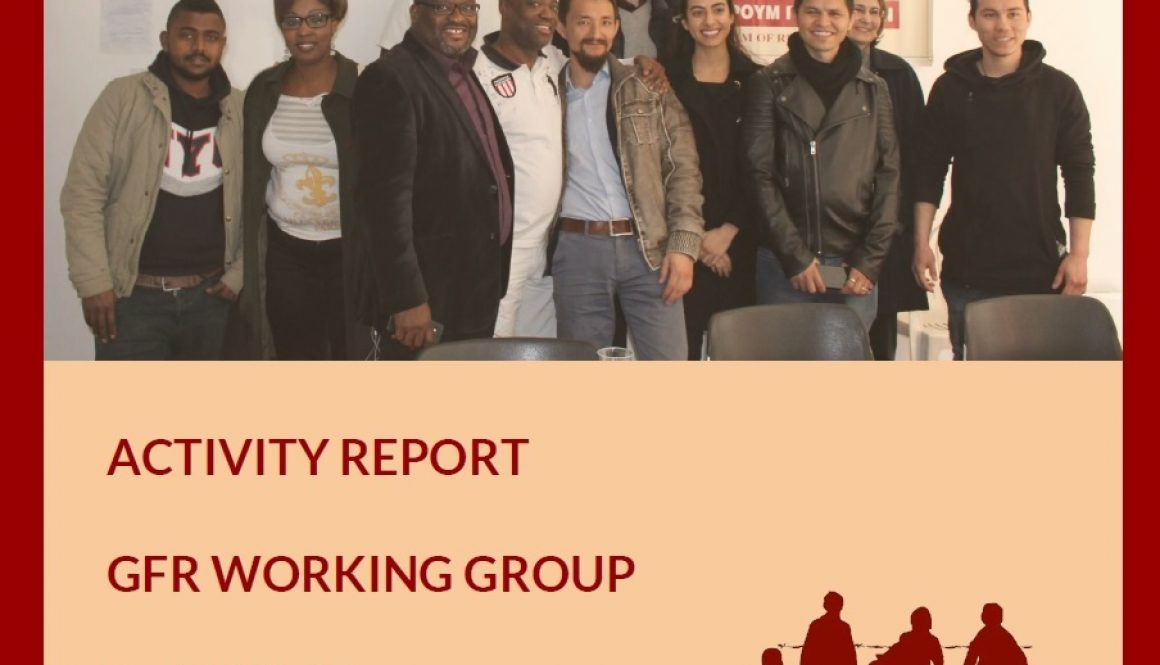 WORKING GROUP ACTIVITY REPORT 2016/2017